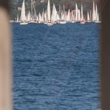 Barcolana alla finestra (Trieste)