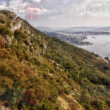 Trieste dalla Napoleonica